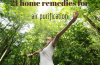 home remedies for air purification