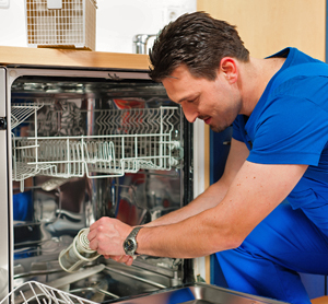 8 Home Remedies for Dishwasher