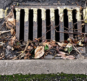 Home Remedies For Clogged Drains